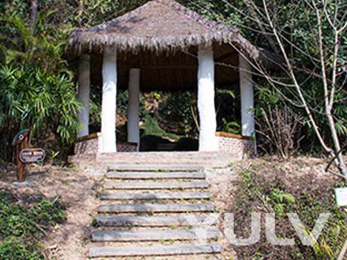 清远佛冈田野绿世界森林浴步道