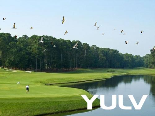 惠州全球候鸟度假龙8国际授权网站(高尔夫店)候鸟的高尔球场