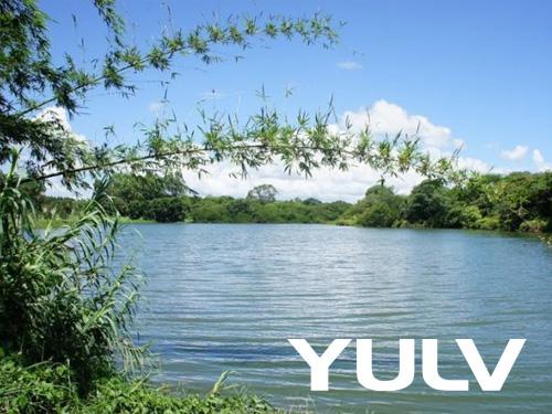 惠州全球候鸟度假龙8国际授权网站(高尔夫店)生态环境